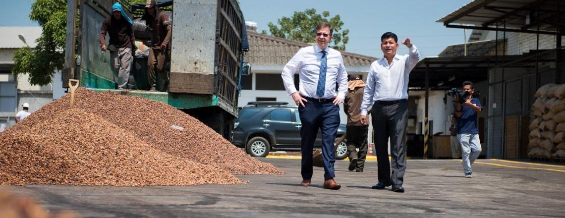 Visita a planta de cacao